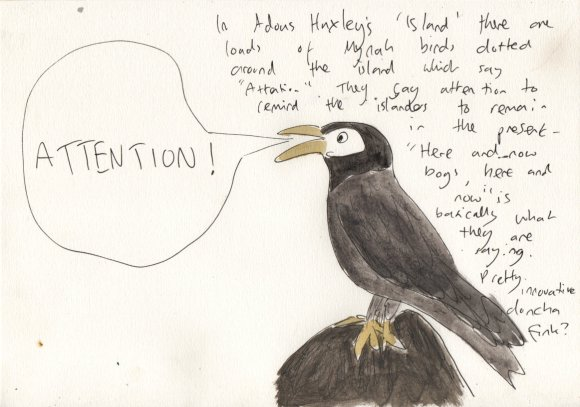 reminder bird